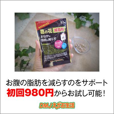 【お試しモニター】葛の花減脂粒 お腹の脂肪を減らすを助ける