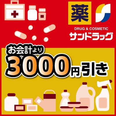 お買い物券3,000円